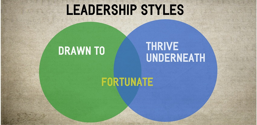 Leadership Styles Drawn to and Thrive Underneath - 850px